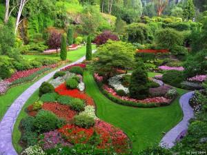 Progettazione Giardini - studio delle essenze